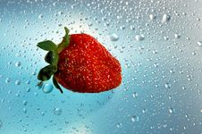 Free Strawberry Red On A Blue Background Royalty Free Stock Image - 19125836