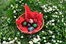 Free Easter Eggs Stock Photo - 19126390