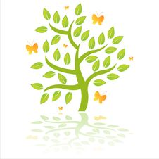 Free Green Tree With Butterflies Stock Photo - 19127810
