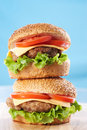 Free Two Cheeseburgers Royalty Free Stock Photos - 19132038