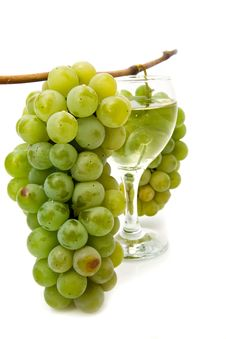 Free Vine And Glass Of Wine Stock Photo - 19131410