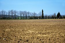 Tuscany Fields Stock Images