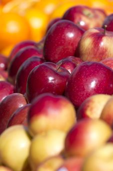 Free Fruits Stock Images - 19132744