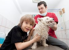 Free Little Boy At Vet With His Dog Stock Images - 19133834