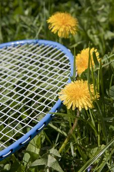Free Blue Racket Stock Photos - 19134363