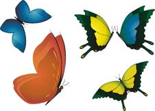 Free Multicolored Butterflies. Stock Photos - 19134623