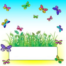Free Card With Grass And Butterflies Royalty Free Stock Images - 19138809