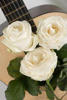 Free White Roses, Guitar Stock Photos - 19143043