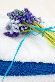 Free Spring SPA Stock Image - 19144771