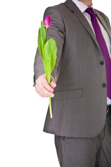 Free Man In Suit And Tie Holding Tulip Stock Image - 19144871