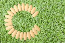 Free Vitamin C As Green Grass Stock Image - 19149501