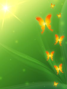 Free Green Background With Butterflys Royalty Free Stock Images - 19149729