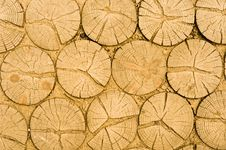 Free Wooden Logs Texture Royalty Free Stock Photography - 19149997