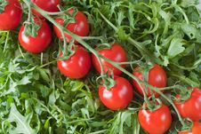 Free Rucola Salad And Cherry Tomato. Royalty Free Stock Photography - 19156807