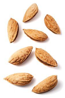 Free Almond Stock Photos - 19157403
