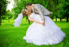 Free Newlywed Kises In The Green Park Stock Image - 19158981