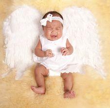 Free Sad Angel Royalty Free Stock Photo - 19159455