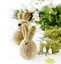 Free Two Easter Rabbits Royalty Free Stock Photo - 19165845