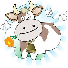Cow With An Orange Flower Royalty Free Stock Photo