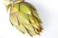 Free Spiky Artichoke Stock Photo - 19161440