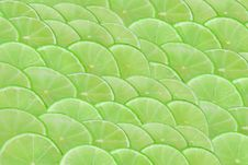 Free Limes Scale Stock Image - 19162391