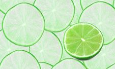 Free Set Of Limes Composition Stock Image - 19162401