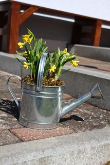 Free Watering Can Stock Photo - 19162820