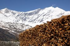 Free Wood In The Himalayas Mountains Stock Photo - 19163570