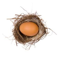 Free Large Egg In The Nest Royalty Free Stock Images - 19163749