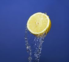 Free Lemon Stock Photography - 19164652