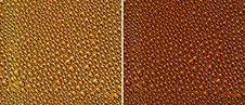 Free Pattern_gold Beer Drops Stock Images - 19165954