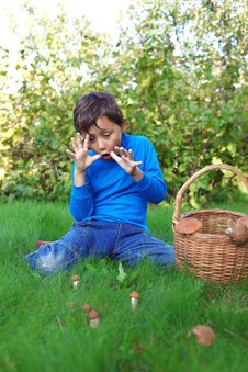 Free Little Boy With Mushrooms Royalty Free Stock Image - 19168396