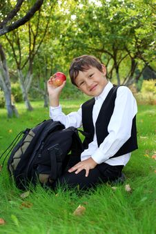 Free Schoolboy With Backpack Stock Image - 19168411