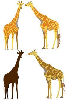 Free Giraffe Set Royalty Free Stock Images - 19172149