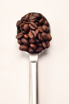 Free Coffee Beans Spoon Stock Photo - 19174110