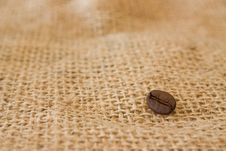 Free Coffee Beans Stock Image - 19175821