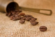 Free Coffee Beans Royalty Free Stock Photography - 19175907