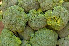 Free Broccoli Royalty Free Stock Photos - 19176038