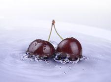 Fresh Cherry Royalty Free Stock Photos
