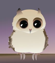 Free Cute Baby Owl Royalty Free Stock Image - 19179366
