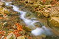 Free Autumn Mountain Rivulet Stock Photography - 19180542