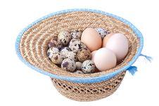 Free Egg Stock Photo - 19180870