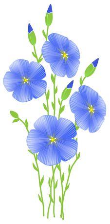 Free Flower Of Flax (Linum Usitatissimum) Stock Image - 19181721