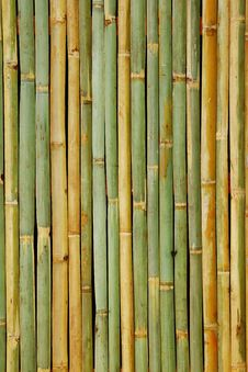 Free Bamboo Background Royalty Free Stock Image - 19181966