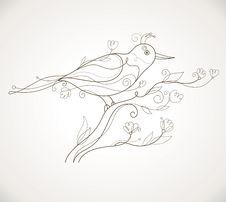 Free Vector Bird Royalty Free Stock Photo - 19184755