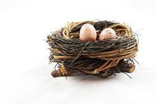 Free Eggs In Nest Royalty Free Stock Image - 19184896