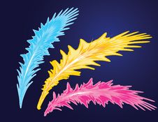 Abstract Feather Set Stock Photos