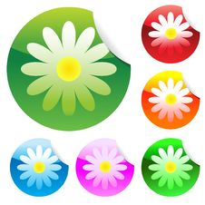 Free Floral Stickers Royalty Free Stock Photography - 19190067