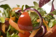 Free Mixed Salad Royalty Free Stock Image - 19190686