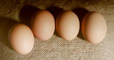 Free Four Brown Eggs. Stock Image - 19190711